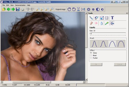 Cosmetic Guide 2.2.8 Portable